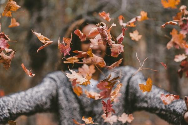 seasons in New Jersey