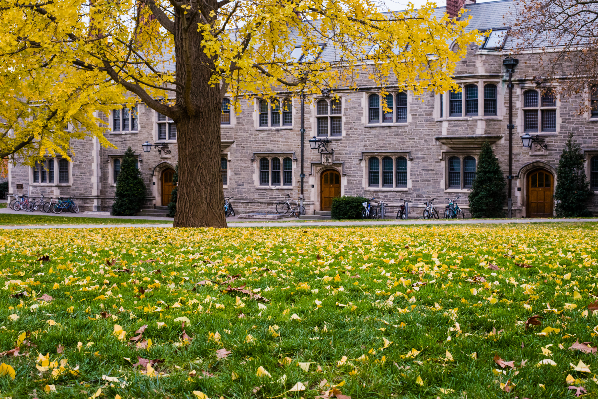 Best Colleges and Universities in New Jersey