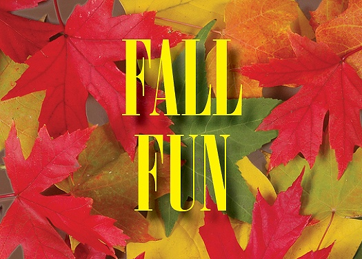 Fall Activities in the Hillsborough/Montgomery Township Area