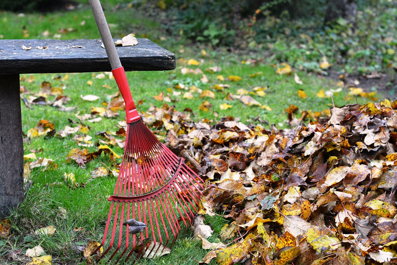 How to Prepare Your Home for Fall in 8 Steps