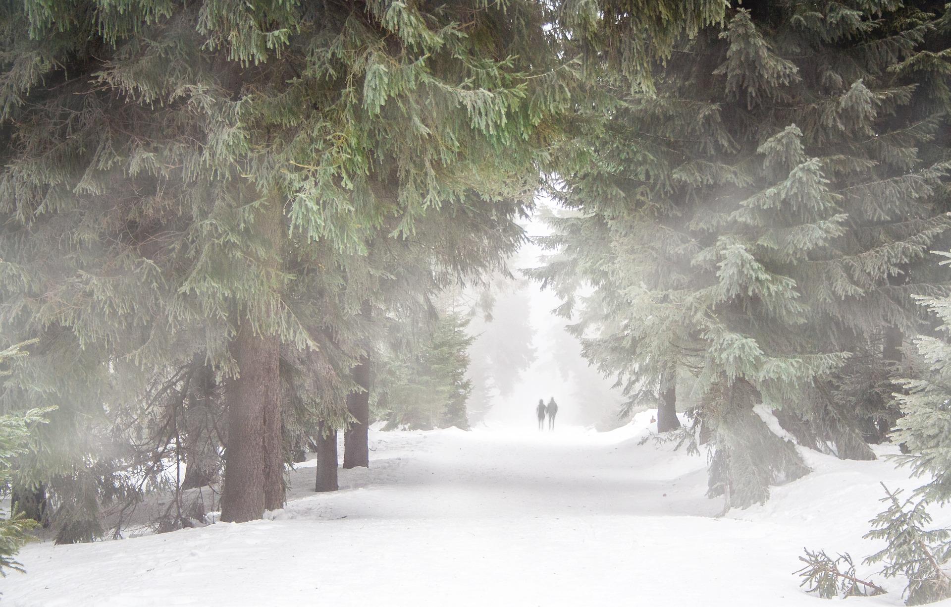 Best Winter Hiking Near New Jersey